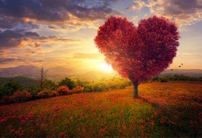 citater om forelskelse Citater om forelskelse – sommerfugle i maven, nervøsitet og spænding. citater om forelskelse