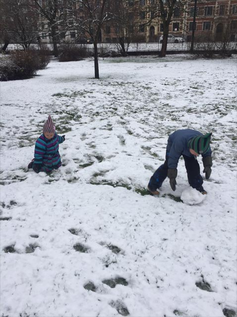 De boltrer sig i sneen